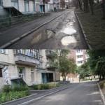 zluky_39