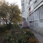 dashok_l_ukr_8 (1)