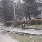 dorizhka (5)