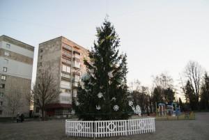 yalynka (8)