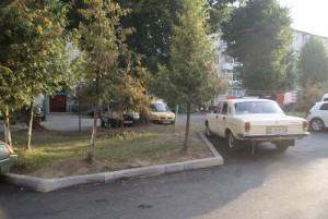 chornopyska (3)
