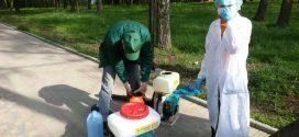 На території тернопільських дитячих садочків проводяться заходи зі знищення іксодових кліщів